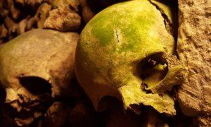 Catacombs Paris Skulls Bones